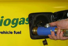biogas in the future