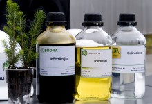Tree fuel