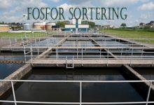 Fosfor-sortering