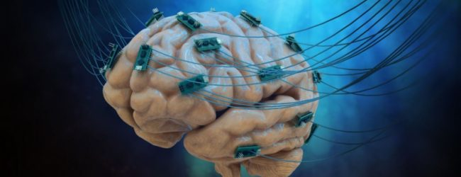 Hjärnemulering