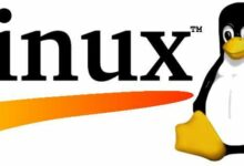 Använda Linux för servrar.